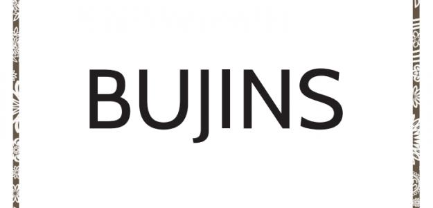 Bujins